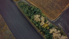 Aerial view of cultivated field from drone pov, top view.  royalty free stock image