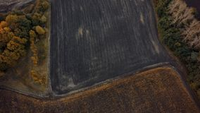 Aerial view of cultivated field from drone pov, top view.  royalty free stock photos
