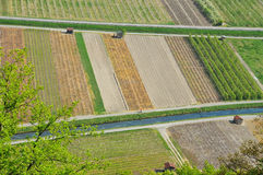 Aerial view of cultivated fields Stock Photos