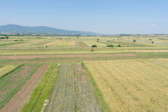 Aerial view of cultivated fields Royalty Free Stock Image