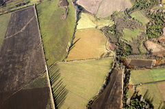 Aerial view cultivated fields Stock Photography