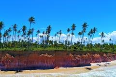 Aerial view of Cumuruxatiba beach, Prado, Bahia, Brazil. Drone view of Cumuruxatiba beach with some coconut`s trees, Prado city, Bahia state, Brazil stock photo