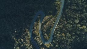 Aerial view of curve empty roadway in green forest. The aero shot of woodland and local logistics linking. Panorama in movement above windy pathway. The stock video