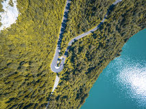Aerial View of Curved Road Between Green Leaf Trees Near Ocean Royalty Free Stock Photo