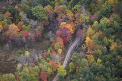 Aerial view of curving road and trees in autumn color in norther royalty free stock photo