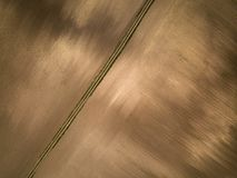 Aerial view of a dappled brown meadow and dirth road Royalty Free Stock Image