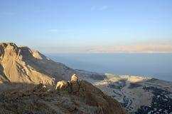 Dead Sea coast. Stock Photography