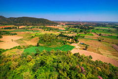 Aerial view of deforest forest. Often many farmers cut forests to provide more land for planting crops Royalty Free Stock Images