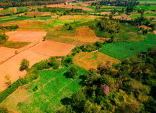 Aerial view of deforest forest. Often many farmers cut forests to provide more room for planting crops Stock Photo