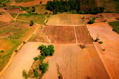 Aerial view of deforest forest. Often many farmers cut forests to provide more room for planting crops Stock Photography
