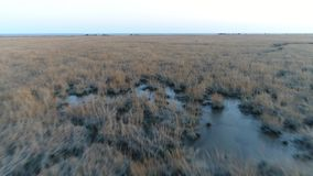 Aerial View of Delaware Bay Marsh Winter colors New Jersey stock footage