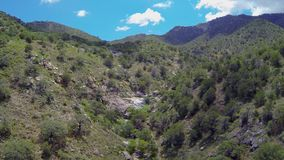 Canyon Aerial View. Aerial view descending a mountain canyon in summertime stock footage