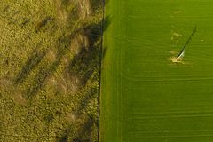 Aerial view on divided area of green agricultural field and meadow with bush and trees.  stock image