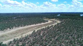 Murray Darling Basin stock video