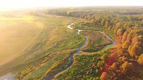 Aerial View. Flying over the beautiful River and beautiful forest. stock video footage