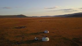 Aerial view of nomadic gers in Mongolian steppe. stock video