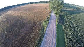 Aerial view over beautiful summer morning rural road and trees stock video