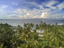 Aerial view from drone on palm trees and the sea. Bali. Indonesia.  Royalty Free Stock Image