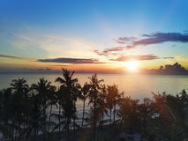 Aerial view from drone on palm trees and the sea on a sunset. Bali. Indonesia.  Stock Images