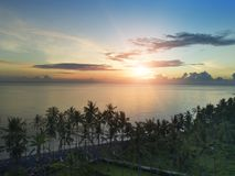Aerial view from drone on palm trees and the sea on a sunset. Bali. Indonesia.  Royalty Free Stock Photography