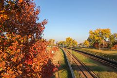 Aerial view from drone on railway road between trees Landscape background with steel rails Old forgotten rail track between