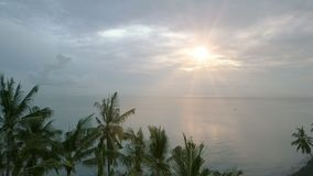 Aerial view from drone on sea, seashore , palm trees on beach , Bali, Indonesia during sunrise stock footage