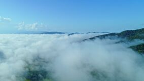 Aerial view drone shot of flowing fog waves on mountain stock video footage