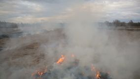 Aerial view of dry grass burning on the farmland stock video footage