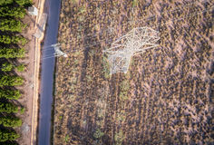 Aerial view of electrical tower and orange trees Royalty Free Stock Photo