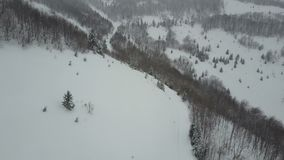 Aerial view of empty mountain road between snowy pine trees stock footage