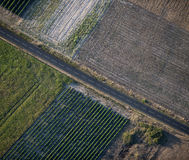 Aerial view of empty road and fields Royalty Free Stock Images