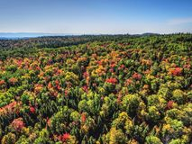 Aerial view of fall colored forest hills Stock Photo