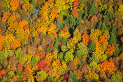 Aerial view of fall foliage in Vermont. Royalty Free Stock Photography