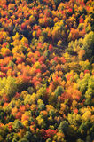 Aerial view of fall foliage in Vermont Royalty Free Stock Photo