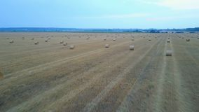Farm Field With Hay Bales stock video footage