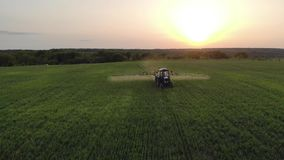 Aerial view of farming tractor spraying on field with sprayer, herbicides and pesticides at sunset. Farm machinery. Spraying insecticide to the green field stock video footage