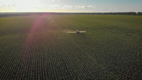 Aerial view of farming tractor spraying on field with sprayer, herbicides and pesticides at sunset. Farm machinery