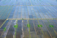 Aerial view of farmland Royalty Free Stock Photos