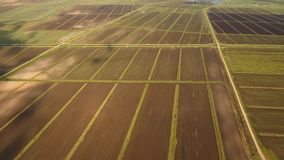 Aerial view of farmland. Aerial view of agricultural, cultivated fields. Agricultural landscape.Irrigated farmland. 4K, flying video, aerial footage stock video footage