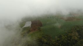 Farmland in the mountains in the fog. Jawa island, Indonesia. Aerial view of farmland, fields, trees with white fog, clouds Jawa island, Indonesia. Fog, cloud Stock Photos