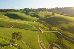 Aerial view of farmland in South Gippsland. Aerial view of rolling hills and beautiful green pasture in South Gippsland, Victoria, Australia. Shot with Mavic Pro royalty free stock image