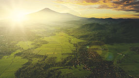 Aerial view of farmland at sunrise Stock Photography
