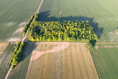 Aerial view of farmlands Stock Images
