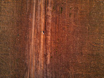 Aerial view of female farmer walking on dirt road Royalty Free Stock Image