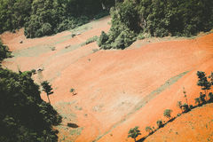 Aerial view of fertile farmland Stock Image