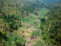 Aerial view of fertile farmland Stock Photography