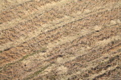 Aerial view of a field Stock Images