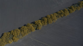 Aerial view of a field from above in the spring Stock Photo
