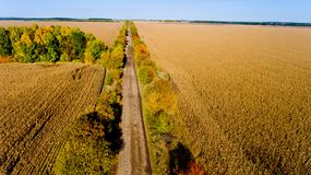 Aerial view of the field autumn road. Aerial view. Aerial view of the field autumn road stock photo