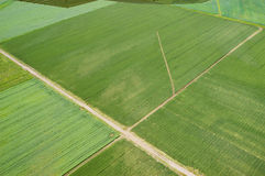 Aerial view of the field Royalty Free Stock Images